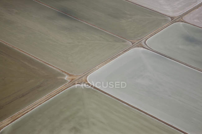 Aerial view of cultivated farm fields — Stock Photo