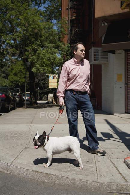 Французский бульдог на поводке и его владелец на улице — стоковое фото