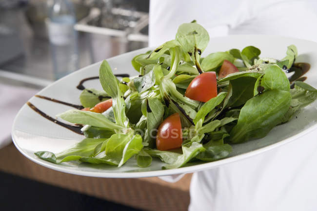 Crop chef showing tomato and green leaf salad in plate — Stock Photo
