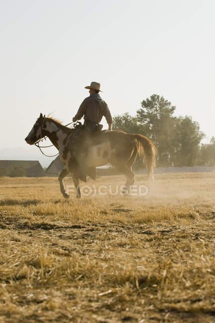 A cowboy riding a horse at farm — Stock Photo