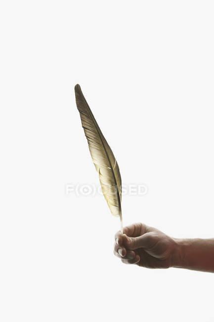 Ernte menschliche Hand hält goldene Feder auf weißem Hintergrund — Stockfoto