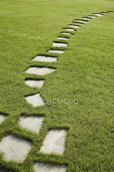Горничная путь шагая камни на травянистой лужайке — стоковое фото