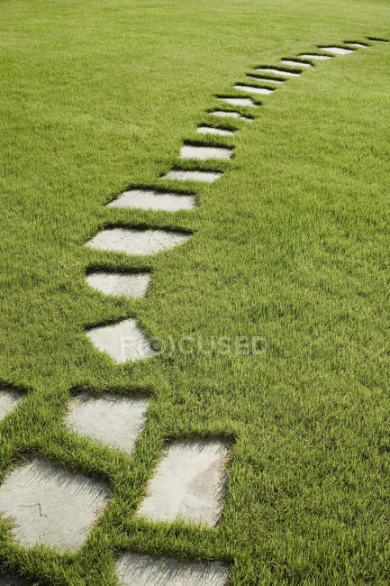 Path maid of stepping stones on grassy lawn — Stock Photo