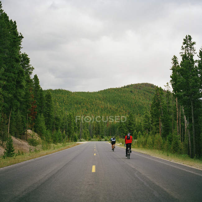 Rear view of two people cycling on country road — Stock Photo
