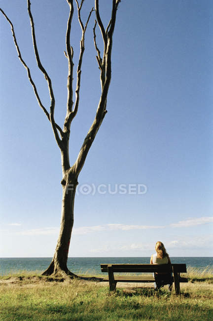 Rear view of woman sitting on bench by bare tree and looking out to sea — Stock Photo