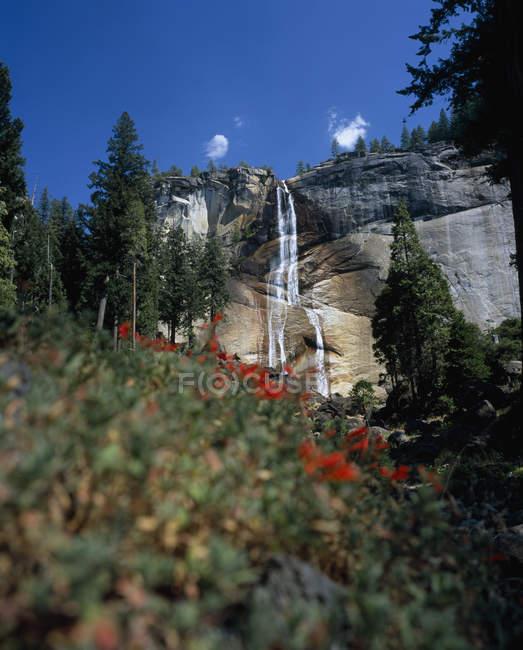 Vue idyllique à la chute d'eau au Parc National de Yosemite, Californie, é.-u. — Photo de stock