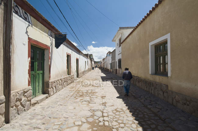 Rear view of person walking along cobblestone street in village — Stock Photo