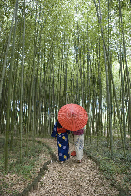 Two woman wearing kimonos walking through a bamboo grove — Stock Photo
