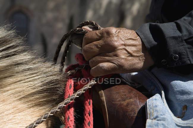 Crop male hands holding reins — Photo de stock