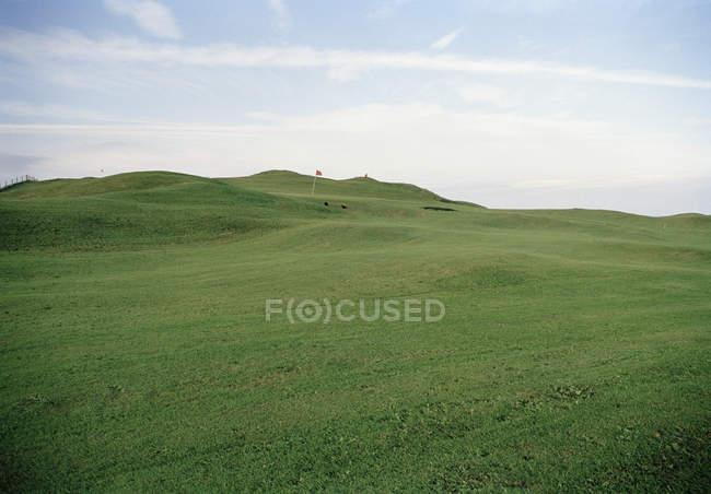 Paesaggio idilliaco di rotolamento campo da golf sopra cielo limpido — Foto stock