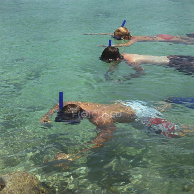 Drei Schnorchler im seichten Wasser schweben — Stockfoto