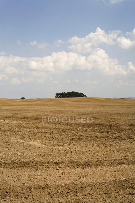 Landscape of ploughed farm field on sunny day — Stock Photo