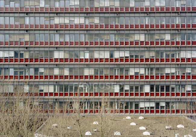 Vista exterior del edificio de fachada de vidrio - foto de stock