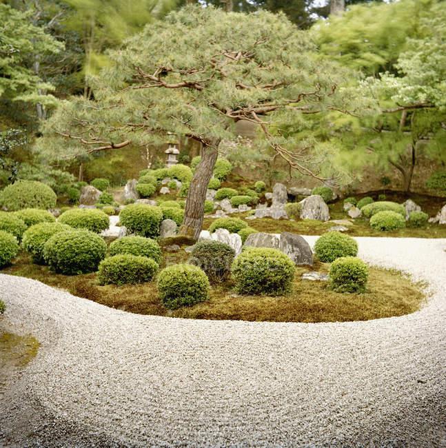 Вид на сад Цзэн в летний день — стоковое фото