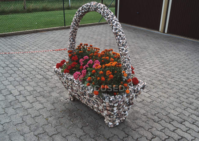 Geraniums in decorative basket on pavement — Stock Photo