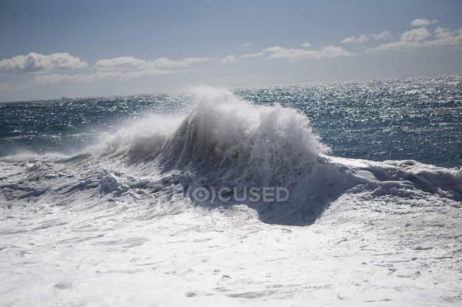Живописный вид на освещаемую солнцем волну серфинга — стоковое фото