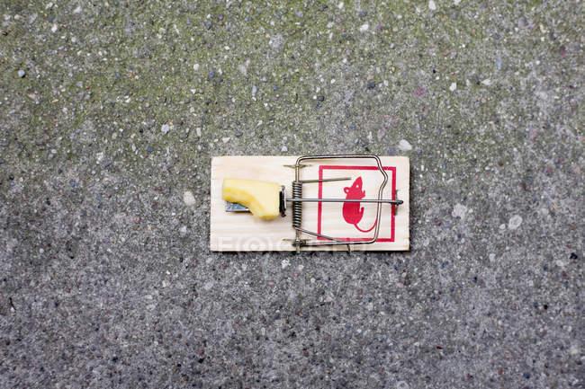 Souricière avec morsure manquant de fromage sur l'asphalte — Photo de stock