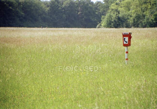 Un poste téléphonique d'urgence entre terrain gazonné — Photo de stock