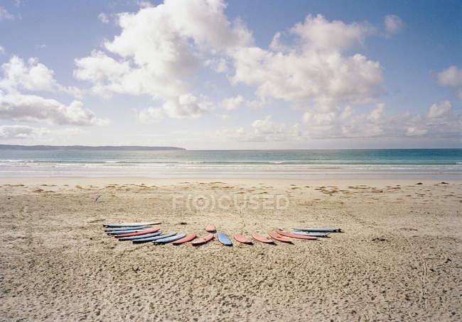 Surfboards in row on idyllic beach — Stock Photo