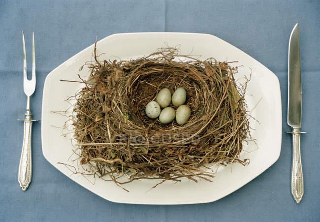 Nido d'uccello con uova su piatto con coltello e forchetta — Foto stock