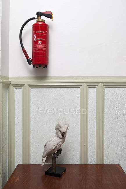 Fire extinguisher by stuffed parrot on pedestal — Stock Photo