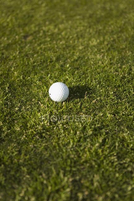 Close up vista de bola de golfe na grama — Fotografia de Stock