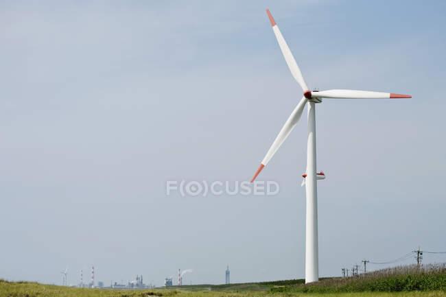 Éolienne sur pelouse verte — Photo de stock