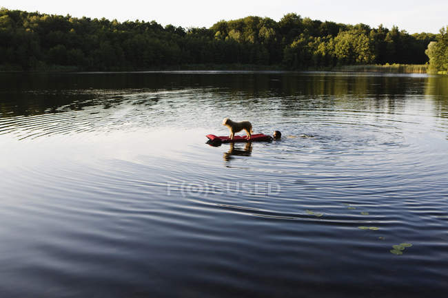 A man pushing a dog on a pool raft in a lake — Stock Photo