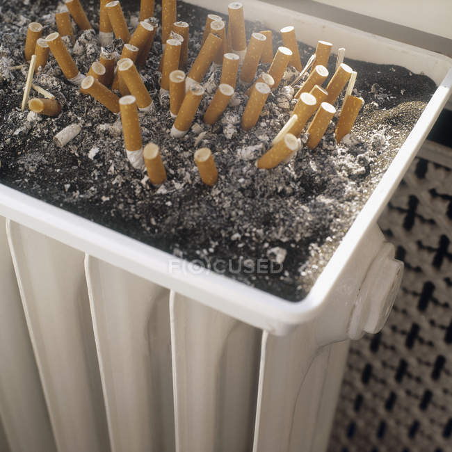Close up view of cigarette buts in ashtray — Stock Photo