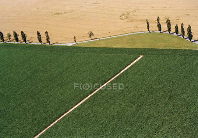 Vue aérienne de champs idylliques — Photo de stock