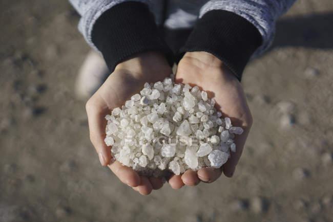 Récolte des mains tenant des cristaux de sel — Photo de stock