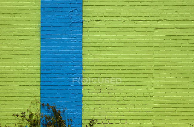 Exterior of brightly colored blue and green wall — Stock Photo