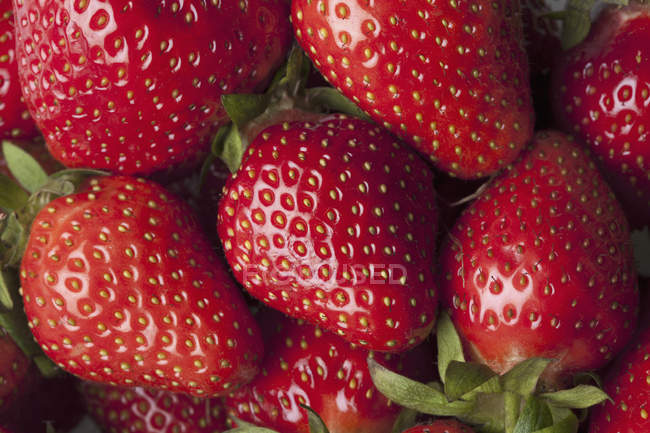 Close-up of fresh red ripe strawberries in heap — Stock Photo