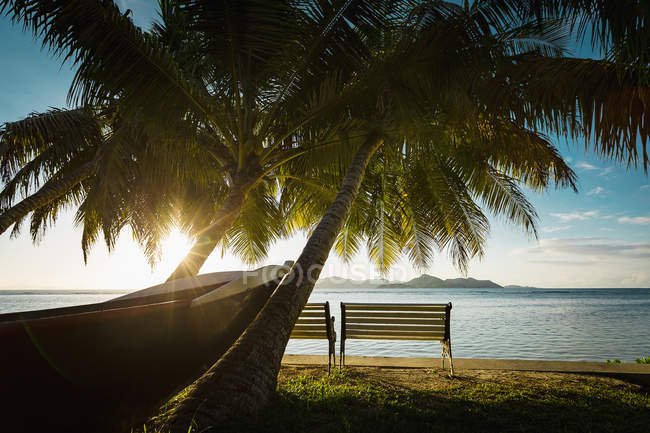Boat and benches by palm trees at tropical beach during sunset — Stock Photo
