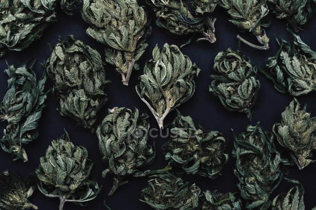 Полный кадр выстрел марихуаны сушеные почки на таблицы — стоковое фото