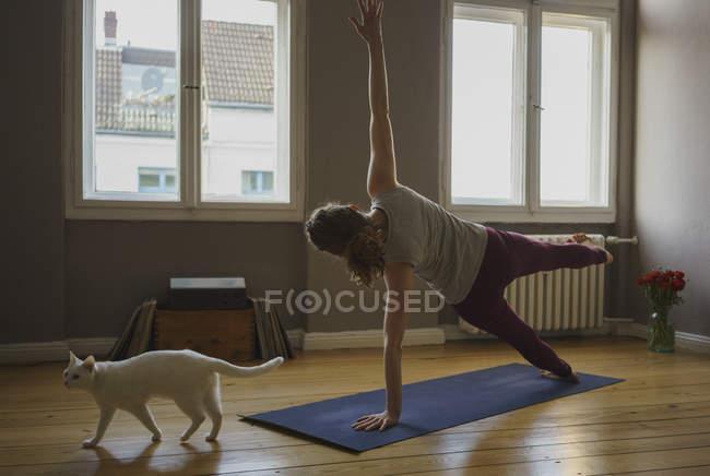 Rückansicht einer Frau, die zu Hause auf Matte mit der Katze Pose übt — Stockfoto