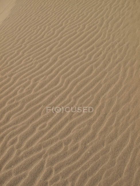Full frame shot of wave pattern on sand in desert — Stock Photo