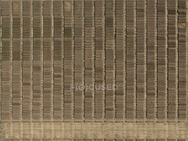 View from above textured farmland — Stock Photo