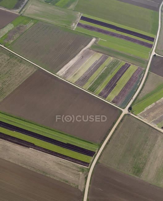Vista aerea marrone e verde colture agricole, Hohenheim, Baden-Wuerttemberg, Germania — Foto stock