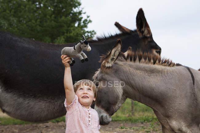 Ragazza carina con gli asini che tiene farcito asino — Foto stock