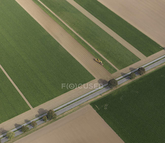 Aerial view combine harvester in agricultural crop, Hohenheim, Baden-Wuerttemberg, Germany — Stock Photo