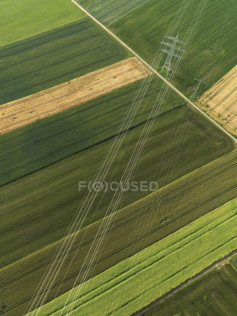 Aerial view vibrant green agricultural crops, Donaueschingen, Baden-Wuerttemberg, Germany — Stock Photo