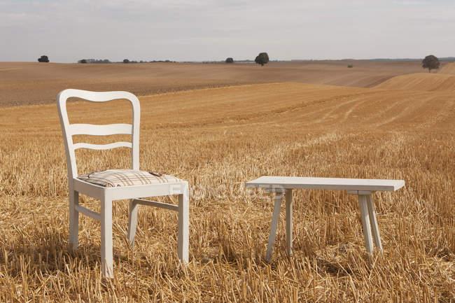 Cadeira e banco em ensolarado, campo rural, Wiendorf, Mecklenburg-Vorpommern, Alemanha — Fotografia de Stock
