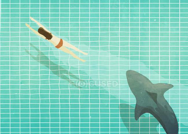 Акула, чеканка женщина в бассейне — стоковое фото