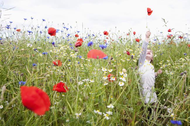 Девушка, играющая на поле полевых цветов — стоковое фото