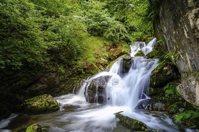 Tranquil forest waterfall, Ybbsitz, Austria — Stock Photo