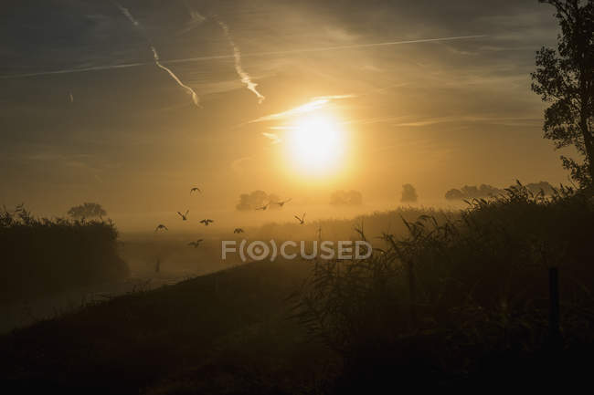 Sunrise over idyllic, tranquil farmland — Stock Photo
