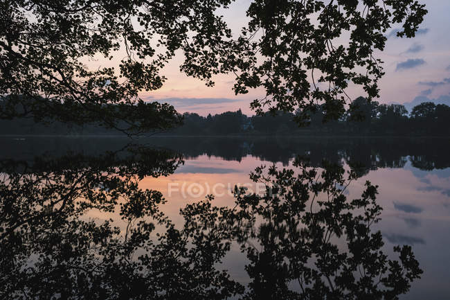Tranquil silhouette reflection of trees in placid sunset lake, Luetjensee, Germany — Stock Photo