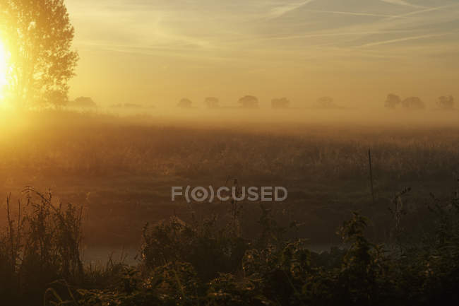 Sunrise over tranquil, idyllic farmland — Stock Photo