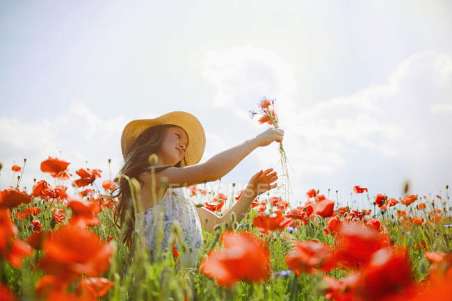 Girl picking red poppy flowers in sunny, idyllic rural field — Stock Photo